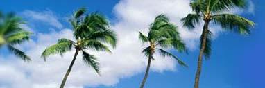 Location villa de charme - Guadeloupe - Villa Madras